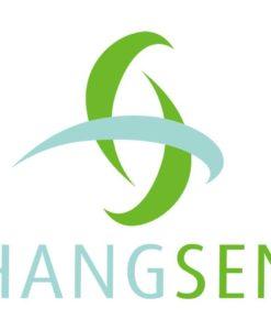 HANGSEN